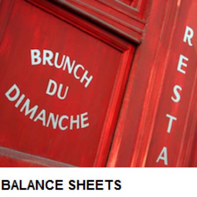 Balance Sheet Basics Module